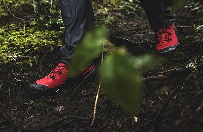 Обзор ботинок Salomon Cross Hike MID GTX